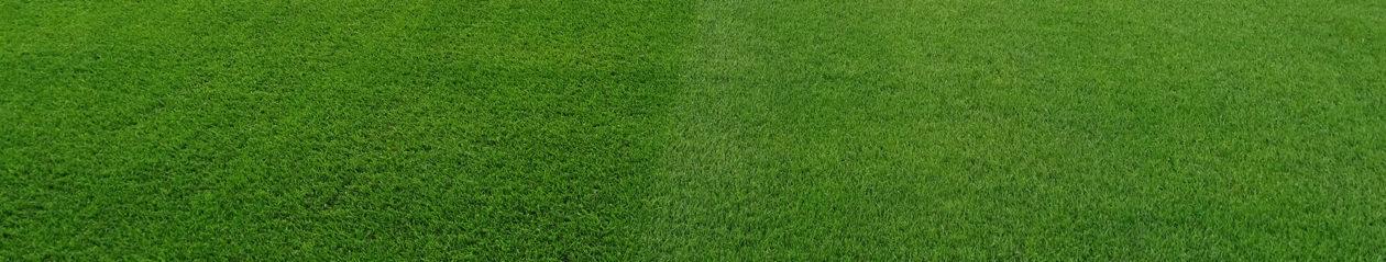 Fortea-En Fotbollsblogg